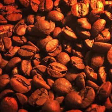Specialty coffee 販売開始!